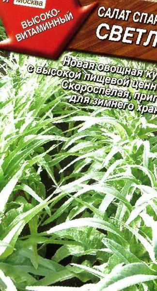 Салат спаржевый выращивание из семян 74