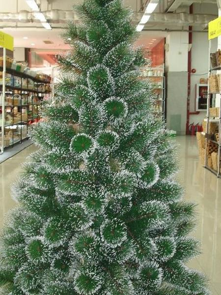 штраф несвоевременную сколько стоит настоящая елка Курсы